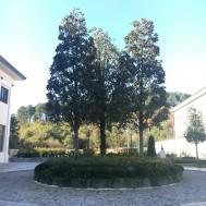Beykoz Eğitim Kampüsü - Nun Okulları