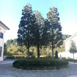 Beykoz Eğitim Kampüsü / Nun Okulları