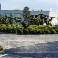Samsun Sheraton Otel